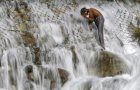 A boy bathes in a stream at Dara on the outskirts of Srinagar May 16, 2013. REUTERS/Danish Ismail