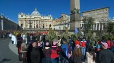 Thousands wave palm and olive branches in St. Peter's Square