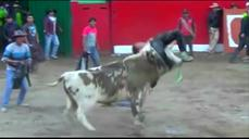 Three gored in Peruvian bull run