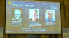 DNA research deployed in war on cancer earns Nobel prize