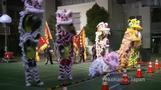 世界各地で「春節」祝う催し(7日)