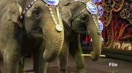 Famed U.S. circus act packs up trunks and retires