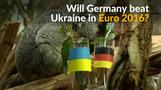 Germany v Ukraine: will the animals get it right?