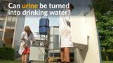 Belgian scientists turn urine into drinking water