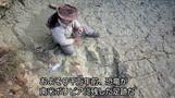 ボリビアで恐竜の巨大な足跡発見、身長12メートル超か(字幕・28日)