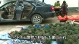 絶滅危惧種センザンコウ密輸の実態、当局は規制を強化(字幕・15日)