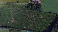 Maze the force be with you: Star Wars design cut into UK maze