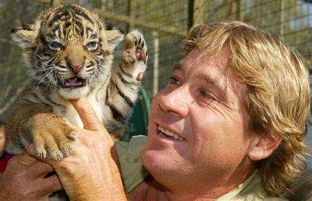''Crocodile Hunter'' Steve Irwin holds a Sumatran tiger cub south of Sydney, April 27, 2004. The only video of Irwin's fatal encounter with a stingray has been destroyed, according to his widow. REUTERS/Will Burgess