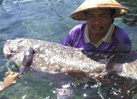 Indonesian fisherman Yustinus Lahama holds up a coelacanth, an ancient fish once thought to have become extinct at the time of the dinosaurs, in a quarantine pool after he caught it in the sea off North Sulawesi province May 19, 2007. REUTERS/Stringer