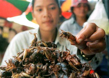 A Cambodian vendor picks up a fried cricket at a market in Phnom Penh in this May 22, 2001 file photo. They're considered a plague in most parts of the world, but for a province in Cambodia, the millions of crickets that swarm the plains every year are a cause for celebration. In rural Kompong Thom, crickets are a delicacy, served up deep-fried, crunchy and seasoned. REUTERS/Chor Sokunthea/Files