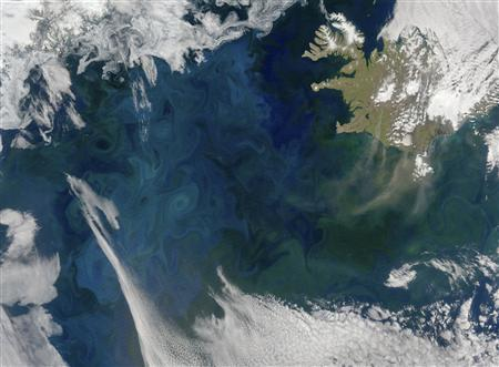 Millions of microscopic plants called phytoplankton colour the waters of the North Atlantic in this image captured on June 23, 2007 by the Moderate Resolution Imaging Spectroradiometer. The upper left edge of the image is bounded by Greenland while Iceland is in the upper right. REUTERS/NASA Goddard Space Flight Center image courtesy Norman Kuring/Handout