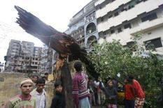 <p>Pessoas se juntam ao redor de árvore derrubada, em Daca. Navios e helicópteros militares de Bangladesh tentavam chegar neste sábado a milhares de sobreviventes de um superciclone que matou pelo menos 900 pessoas ao atingir o empobrecido país com ventos e ondas violentos. Photo by Rafiqur Rahman</p>
