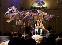 "<p>Il dinosauro ""Sue"" a Field Museum di Chicago. REUTERS Foto</p>"
