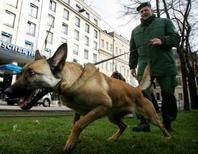 <p>Les chiens policiers de Düsseldorf, en Allemagne, vont être équipés de chaussures pour protéger leurs pattes des débris de verre et autres objets dangereux lors des rondes. /Photo d'archives/REUTERS/Michaela Rehle</p>