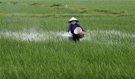 <p>A farmer spreads fertilizer on a rice field in La village, 20 km (12.5 miles) outside Hanoi April 16, 2008. REUTERS/Kham</p>