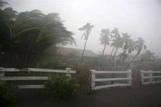 """<p>Тропический шторм """"Альма"""" бушует над одной из деревень Никарагуа, 29 мая 2008 года. Первый ураган сезона штормов 2008 года, получивший имя """"Берта"""", сформировался в сотнях километрах от США, сообщает Национальный центр исследования ураганов.( REUTERS/Oswaldo Rivas)</p>"""
