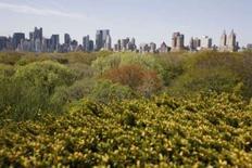 <p>Des balades en ballons gonflés à l'hélium offrant une vue spectaculaire sur Central Park sont proposées au public jusqu'au 22 août pour célébrer le 150e anniversaire de la conception de l'un des parcs les plus célèbres au monde. /Photo d'archives/REUTERS/Shannon Stapleton</p>