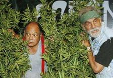 <p>Comedians Cheech & Chong, Cheech Marin (L) and Tommy Chong, pose with artificial marijuana plants for photographers after announcing their first comedy tour in 25 years during a news conference in Los Angeles July 30, 2008. Marijuana is not just for dopes anymore, at least not in Hollywood. REUTERS/Fred Prouser</p>