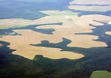 <p>Foto de archivo de una zona de la Amazonia deforestada para recibir cultivos de soja, Brasil, 25 feb 2008. La deforestación de la Amazonia brasileña se redujo en julio a 323 kilómetros cuadrados de selva cortada o muy degradada, menos de la mitad del área afectada en junio, informó el viernes el Instituto Nacional de Pesquisas Espaciales (Inpe). El ente estatal, que controla la selva con el sistema satelital denominado Detección de la Deforestación en Tiempo Real (DETER), dijo que el mes pasado se pudo observar el 81 por ciento de la región. (Foto de archivo) Photo by (C) PAULO WHITAKER / REUTERS/Reuters</p>