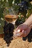 <p>Foto de archivo de un vino rose en los viñedos de e Domaine Saint Andre de Figuiere at La Londe Les Maures en Provenza, Francia, 1 sep 2008. Amazon.com, la minorista por internet más grande del mundo, planea comenzar a vender vinos producidos en Estados Unidos en su sitio de internet a finales de septiembre o en octubre, dijo el miércoles la Asociación de Viñas del Valle de Napa. Las Viñas del Valle de Napa, un grupo sin fines de lucro que representa a 315 bodegas de la famosa región productora de vinos de California, ya ha comenzó a crear grupos de trabajo para viñas interesadas en vender a través del gigante minorista, dijo Terry Hall, directora de comunicaciones del grupo. Photo by (C) JEAN-PAUL PELISSIER / REUTERS/Reuters</p>