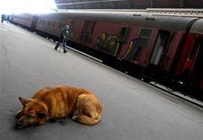 <p>Un cane accovacciato vicino ai vagni di un treno fermo in stazione.. REUTERS/Laszlo Balogh(HUNGARY)</p>