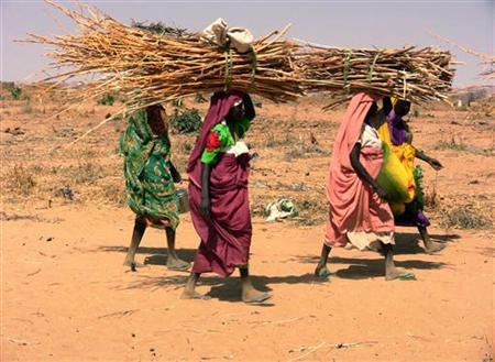 Internally displaced women carry firewood to Kalma Camp, near Nyala in Darfur in this handout photograph released by MSF, April 3, 2008. REUTERS/Avril Benoit/MEDECINS SANS FRONTIERES/Handout