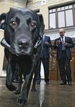 <p>Koni, la chienne labrador noire du Premier ministre russe Vladimir Poutine, a reçu un collier GPS qui permettra à son maître de la suivre à la trace où qu'elle aille. /Photo prise le 17 octobre 2008/REUTERS/RIA Novosti/Pool</p>