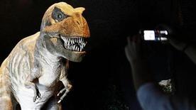 <p>Foto de archivo de un Tyrannosaurus Rex mecánico en una exhibición en Portugal, 12 mar 2008. Cuando se trata del olfato, ningún dinosaurio carnívoro era tan agudo como el tyrannosaurus rex. Científicos de la University of Calgary y del Royal Tyrrell Museum en Alberta, Canadá, compararon el tamaño de los bulbos olfativos -la parte del cerebro que regula el sentido del olfato- en una gran variedad de dinosaurios carnívoros. REUTERS/Nacho Doce</p>