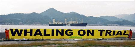 The Japanese whaling ship Nisshin Maru departs from its home port of Innoshima in Hiroshima in western Japan November 17, 2008. REUTERS/Yuzuru Oshihara/Greenpeace