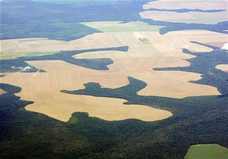 Virgin Amazon rain forest surrounds patches of deforested land prepared for the planting of soybeans, in this aerial photo taken over Mato Grosso state in western Brazil, February 25, 2008. REUTERS/Paulo Whitaker