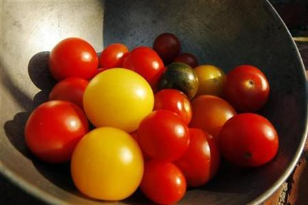Tomatoes of different colors are seen in a bowl in Medford, Massachusetts July 17, 2008. REUTERS/Brian Snyder