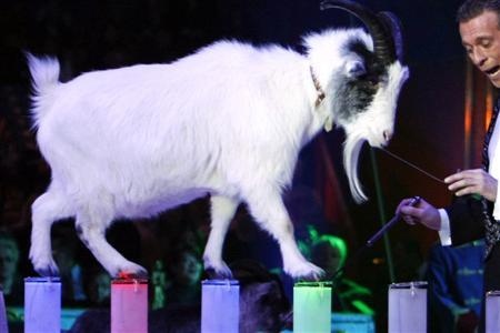 A magician performs with a goat during the opening ceremony of the 33nd Monte Carlo International Circus Festival in Monaco January 15, 2009. REUTERS/Eric Gaillard