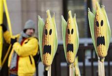 <p>Immagine d'archivio di una protesta di Greenpeace contro le coltivazioni geneticamente modificate. REUTERS/Thierry Roge (BELGIUM)</p>