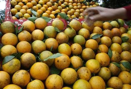 A woman arranges oranges for sale on a roadside stall in Vietnam's northwest province of Hoa Binh, 100 km from Hanoi December 27, 2008. REUTERS/Kham