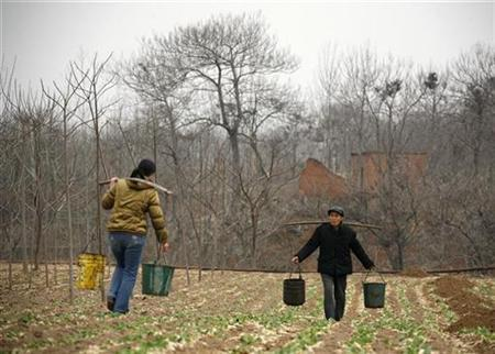 A farmer and his daughter carry buckets of water to their drought-affected crops in a field near the village of Zhudong in Hongchang County, Henan province February 15, 2009. REUTERS/David Gray