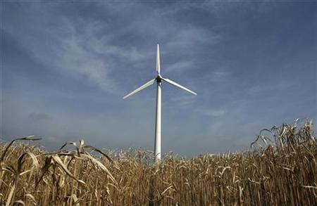 A wind turbine is pictured in a field of miscanthus, or ''Elephant Grass'', at Renewables Energy Systems' green technology and renewable energy site at Kings Langley in southeast England April 23, 2009. REUTERS/Luke MacGregor