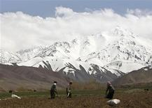 <p>Afghan farmers dig a potato field in front of snow covered mountains, in Bamiyan province in this April 22, 2009 file photo. REUTERS/Omar Sobhani/Files</p>