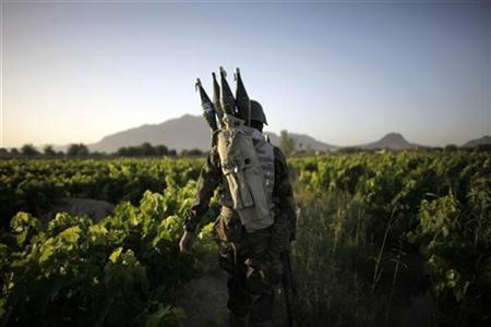An Afghan National Army soldier walks during a special operation at Sanjaray in Kandahar Province, May 16, 2009. REUTERS/Jorge Silva