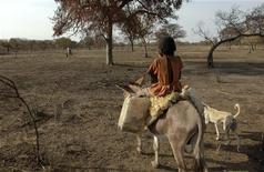 <p>Девочка из племени Миссерия на осле в Южном Судане 13 марта 2009 года. Десятки полицейских и около 200 человек из разных племен были убиты во время столкновения двух племен, занимающихся скотоводством в Южном Кордофане, сообщает в пятницу суданское новостное агентство SUNA. REUTERS/Tim McKulka/UNMIS/Handout</p>