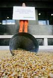 <p>Un attivista di Greenpeace protesta contro la Commissione Europea sul mais geneticamente modificato. REUTERS/Yiorgos Karahalis</p>