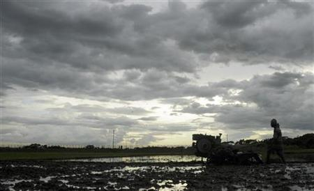 A farmer works on his paddy field against the backdrop of monsoon clouds at Shanmura on the outskirts of Agartala, capital of India's northeastern state of Tripura, July 19, 2009. REUTERS/Jayanta Dey