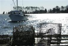 <p>Old crab traps, brought up the Great Wicomico River in Virginia, rest on the transom of a deadrise boat, February 24, 2009. REUTERS/Gary Cameron</p>