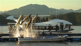 """<p>Foto publicitaria de una escena del filme """"The Cove"""". Una nueva película mostrará cómo pescadores japoneses atraen a miles de delfines salvajes hacia una caleta secreta en Japón donde, según activistas, son capturados para ser usados en parques de entretenimiento o como alimento. REUTERS/Oceanic Preservation Society/Handout</p>"""