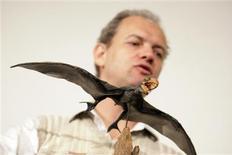 <p>Un modelo a escala de un pterosaurio durante una presentación en la Universidad Federal de Río de Janeiro, 5 ago 2009. Un fósil de pterosaurio, el primer vertebrado volador conocido, encontrado en China muestra que las criaturas tenían fibras únicas y complejas que les permitía volar con la precisión y el control de los pájaros, dijeron investigadores el miércoles. REUTERS/Bruno Domingos</p>