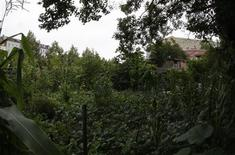<p>The garden and summer house of Turkish pensioner Osman Kalin created by the 84-year-old man on land he seized from East Germany in 1983, is pictured in Berlin August 11, 2009. REUTERS/Tobias Schwarz</p>