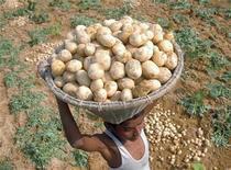 <p>Мальчик несет корзину картофелин на ферме в пригороде Агарталы, Индия 1 февраля 2008 года. В Индии зафиксирован самый высокий показатель использования детского и принудительного труда, в таких областях как добыча золота, сбор какао и пошив одежды, согласно отчету правительства США. REUTERS/Jayanta Dey</p>