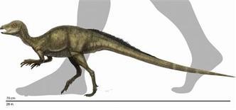 <p>Ilustración de un Fruitadens haagarorum, el dinosaurio más pequeño encontrado en Norteamérica. Fósiles del menor dinosaurio encontrado en Norteamérica, una especie veloz de apenas 71 centímetros de alto y más ligera que un conejo, fue exhibida por primera vez en un museo de Los Angeles. REUTERS/Reconstruction by Doyle Trankina, NHM Dinosaur Institute/Handout</p>