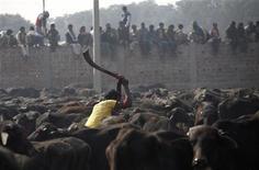 <p>Un uomo sta uccidendo degli animali nell'ambito di un sacrificio vicino al tempio di Gadimai a sud di Kathmandu. REUTERS/Shruti Shrestha</p>