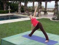 "<p>Pregnant model Lucy Bivins demonstrates a triangle pose in a segment from the ""Element: Prenatal & Postnatal Yoga"" video. REUTERS/Anchor Bay Entertainment</p>"