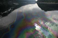 <p>Idrocarburi nel fiume in foto d'archivio. REUTERS/Ilya Naymushin</p>